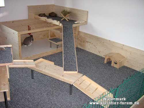 kaninchen innengehege google suche kaninchen raum pinterest kaninchen meerschweinchen. Black Bedroom Furniture Sets. Home Design Ideas