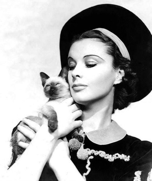 """Vivien Leigh with her Siamese cat """"New Boy"""", mid-1930s. Vivien was a lifelong cat lover, with a particular preference for the Siamese breed."""