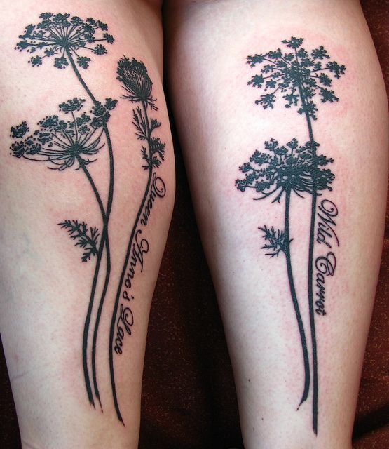 Queen Anne S Lace Tattoo Inspiration Lace Tattoo Plant Tattoo