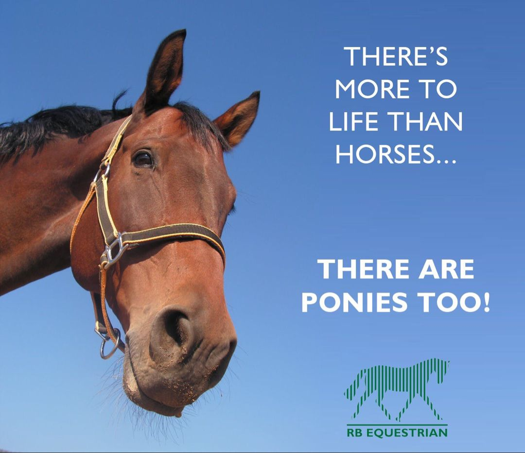 There S More To Life Than Horses There Are Ponies Too Rb Equestrian