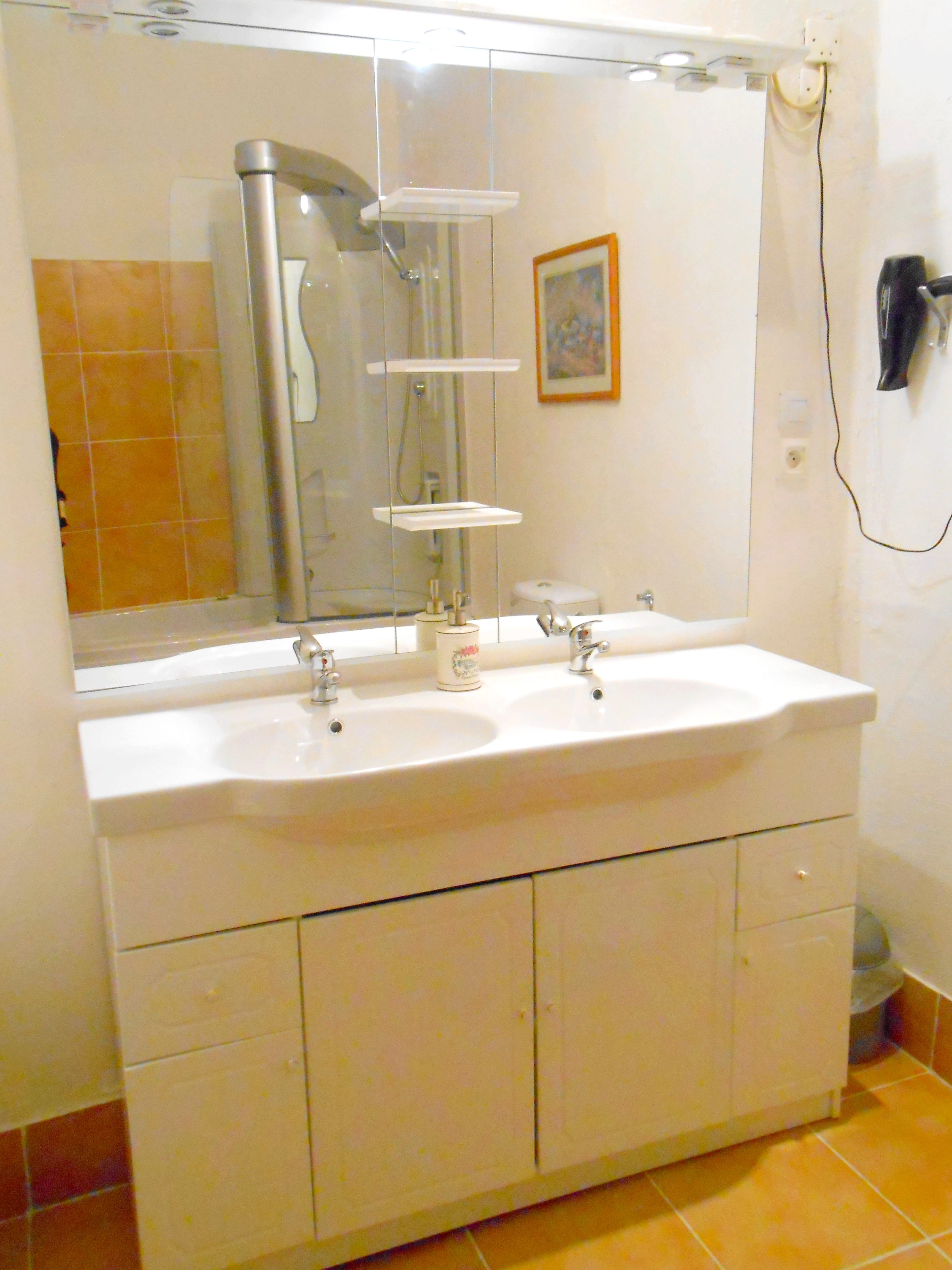 LA FAMILIALE : double lavabo, grand mirroir, plusieurs spots lumineux. Nombreux espaces de rangement sous le lavabo. Sèche cheveux et sèche serviette. Draps de bain fournis.