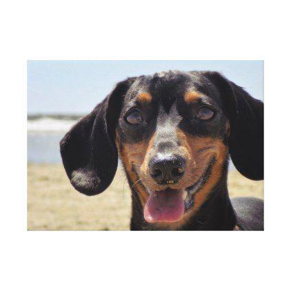 San Diego Beach Canvas Print Zazzle Com Dachshund Puppy San