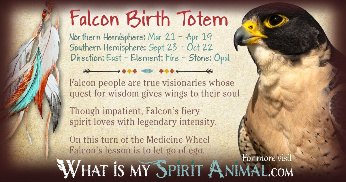 Falcon Totem Red Hawk Totem Native American Pinterest Native