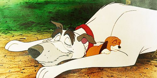 *CHIEF & LITTLE COPPER ~ The Fox and the Hound, 1981.... asleep in the sun.