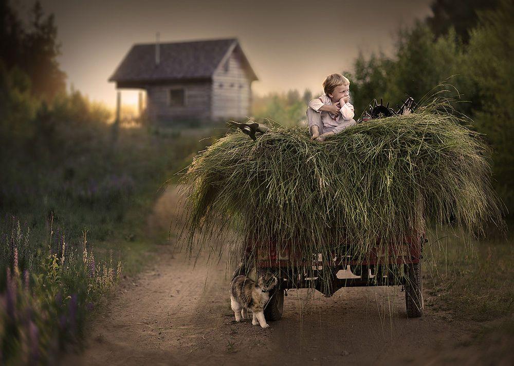 Елене днем, смешные картинки из сельской жизни