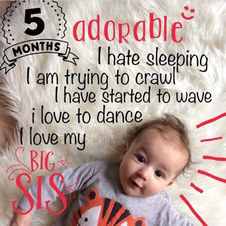 5 Month Old Baby Milestones Photo Editor App Little