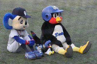 問 結婚するサッカーファンの彼を野球ファンにするには つば九郎とドアラの回答が秀逸すぎた 野球 マスコット つば九郎 ドアラ