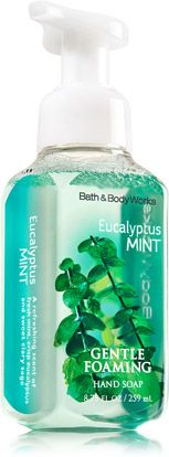 Eucalyptus Mint Gentle Foaming Hand Soap Soap Sanitizer Bath