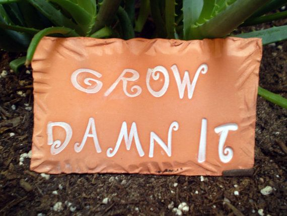 heehee.Garden Sign Grow Damn It  or Houseplant by spinningstarstudio, $3.00