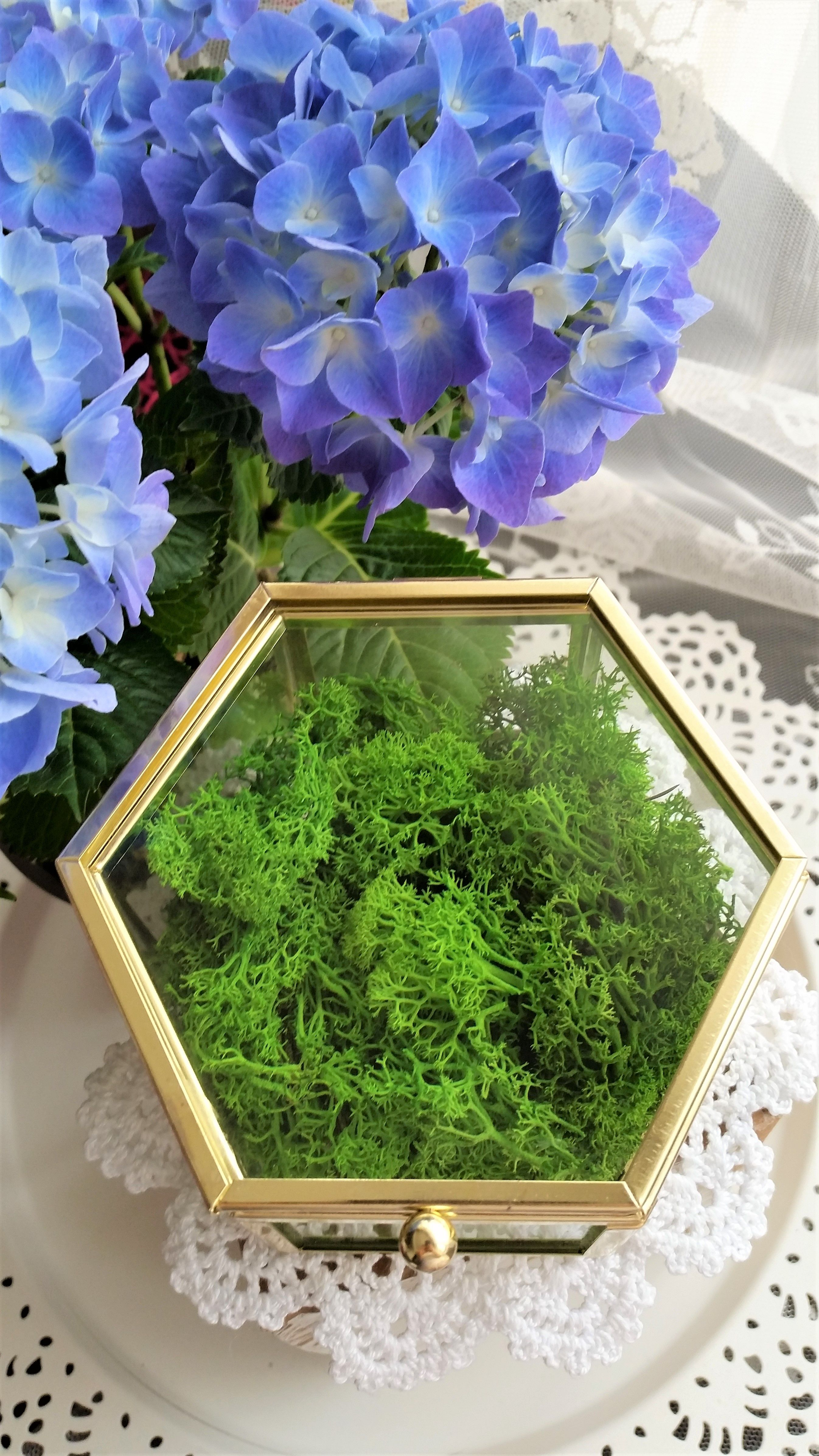 Szklana Szkatulka Na Obraczki Z Mchem Home Decor Decor Terrarium