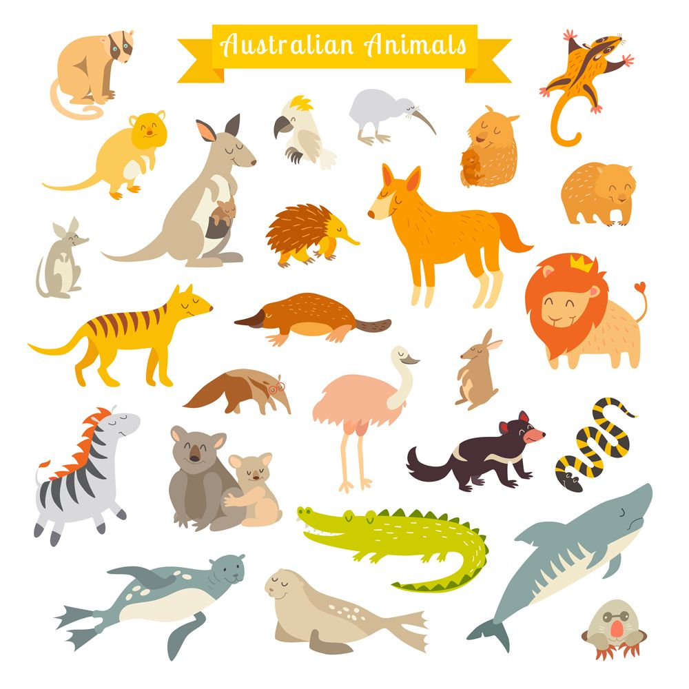 Animals World Map Australia Australian Animals Australia Animals Animals For Kids