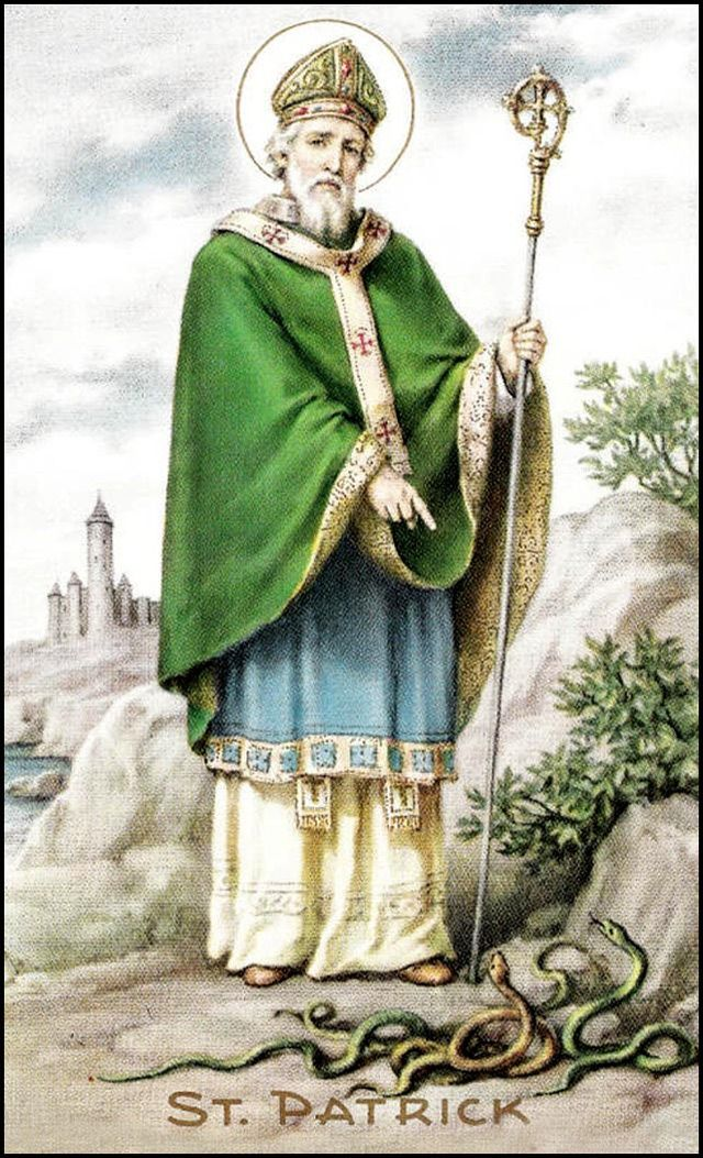 Image result for st patricks public domain images