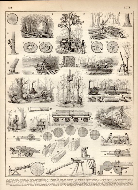 Logging Tools Equipment 1897 Antique Print By Craftissimo