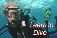Underwater Phantaseas Scuba Diving Is Fun Your Dive Center Should Be Too Scuba Diving Lessons Scuba Diving Certification Diving