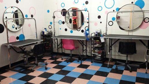 Our Grooming Salon. Bow Wow Beauty Shoppe. San Diego.