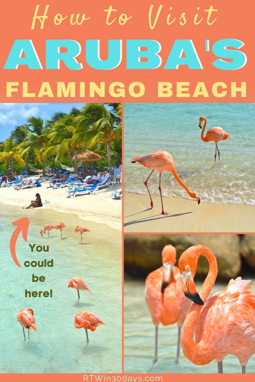 Caribbean Hurricane Belt : caribbean, hurricane, Caribbean, Islands:, Aruba,, Bonaire, Curacao, Bonaire,, Flamingo, Beach