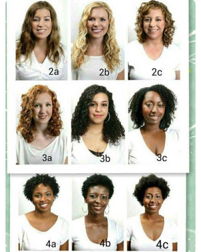 hair type chart by buzzfeed BEAUTY Curly hair styles, Hair, Hair