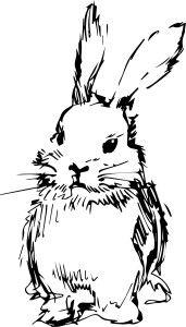Empty Nest By Jillian Jackson Rabbit Silhouette Rabbit