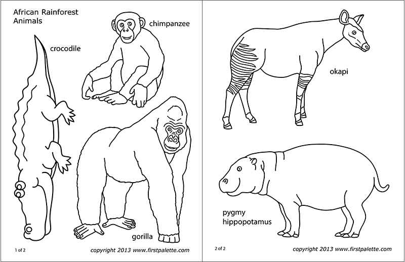 African Jungle Or Rainforest Animals Free Printable Templates Coloring Pages Firstpalette Com Rainforest Animals African Jungle Animal Coloring Pages