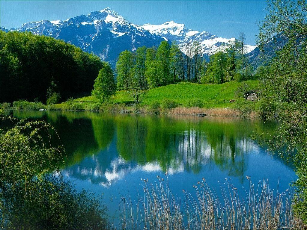 terre nature paysage alaska nature - photo #48