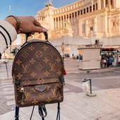Photo of Louis Vuitton LV Mini PALM backpack shoulder bag       This image has get 18 rep…