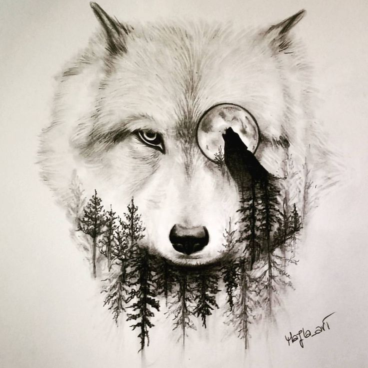 Wolf and the moon pinterest bazaar no limit advertising wolf and the moon ccuart Gallery