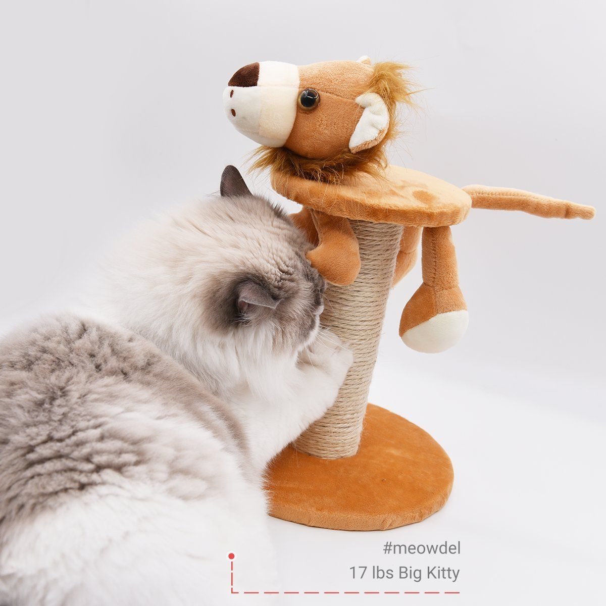 Morepets Zoo Buddies Kitten Small Cat Tree Scratching Post Compact Size Toys Giraffe Small To View Furt Small Cat Tree Cat Tree Scratching Post Kitten Toys