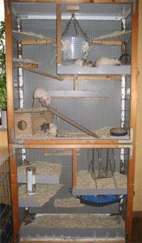 Pin By Amanda Beeler On Fur Tiere Kafige Rat Cage Diy Rat Cage Rat House