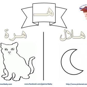 تلوين الحروف العربية حرف الهاء هـ Symbols Letters Education