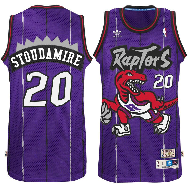 96bed6968 Toronto Raptors  20 Damon Stoudamire Hardwood Classics Swingman Purple  Jersey
