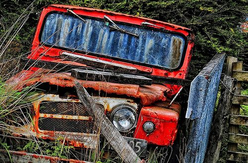 Use By Expired Monster Trucks Cool Cars Taranaki
