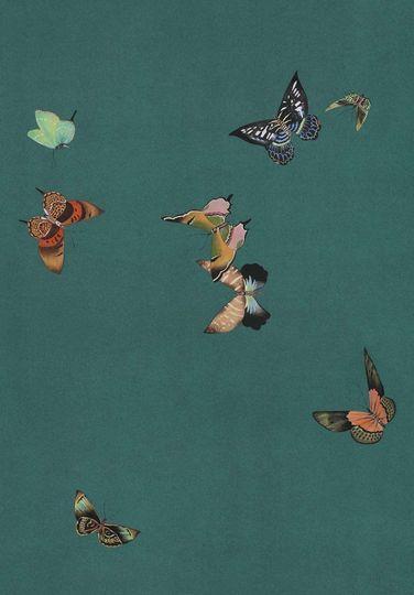 Papier Peint Nature Papillon Fleuri Oiseau Papier Peint