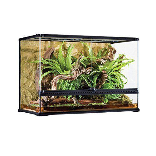 Exo Terra Glass Terrarium 36 By 18 By 24 Inch Bearded Dragon
