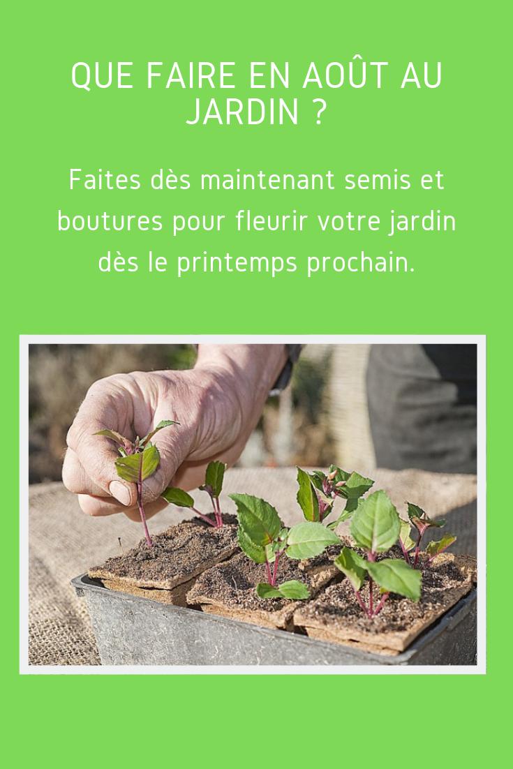 Que Faire Au Jardin En Aout Avec Images Jardins Trucs Et