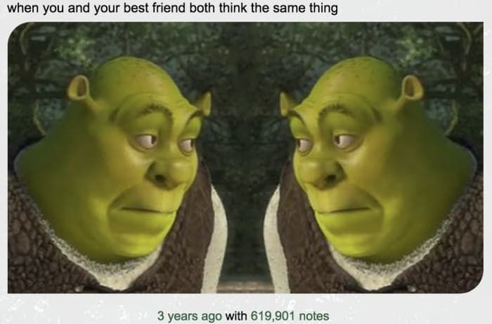 Funny Memes For Your Best Friend : 19 jokes only you and your best friend will get memes and funny memes