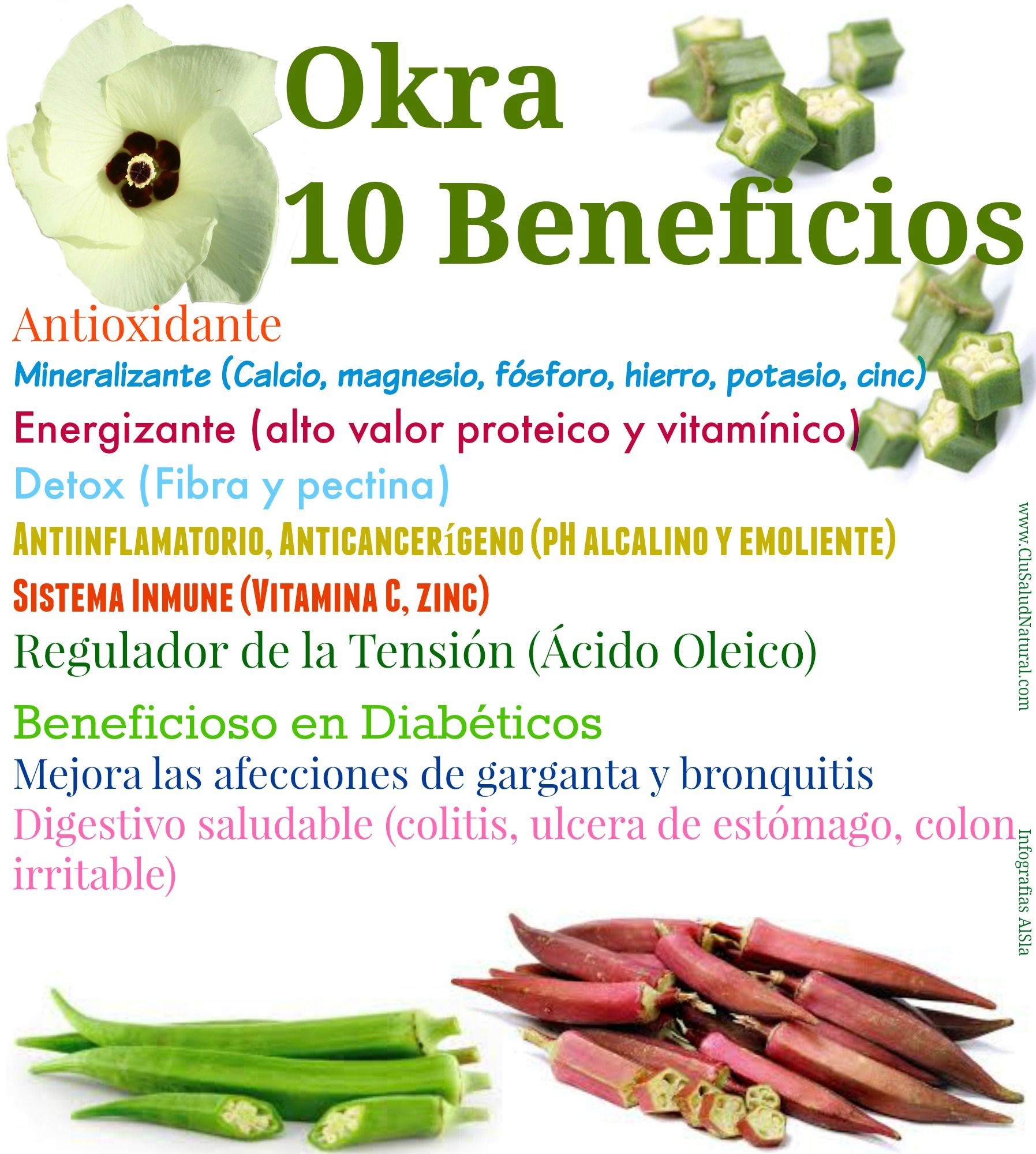 okra para el tratamiento de la diabetes orgánica