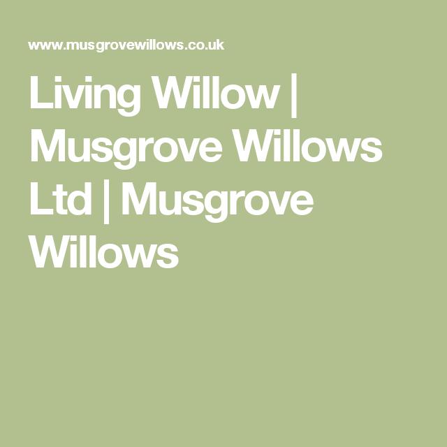 Living Willow | Musgrove Willows Ltd | Musgrove Willows