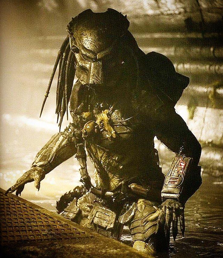 Pin on Alien vs Predator