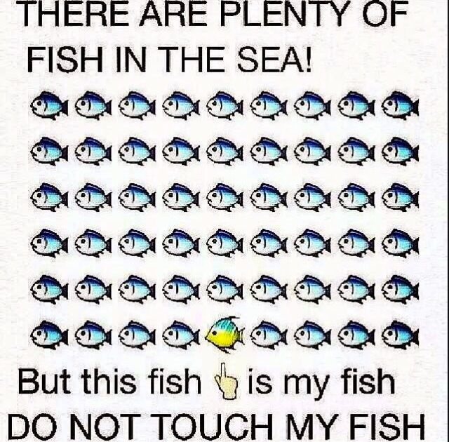 Long Distance Relationships Plenty Of Fish Relationship Memes Funny Relationship