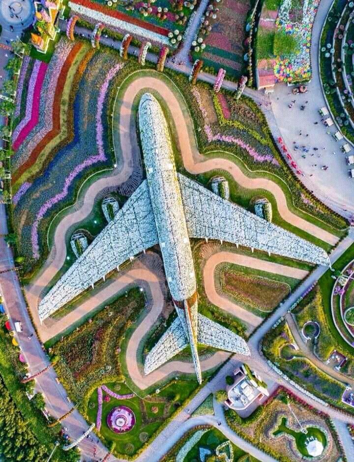 Dubai airport. Miracle garden, Dubai, Photo