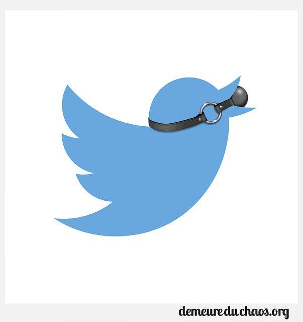 Logo twitter baillon | Flickr: Intercambio de fotos