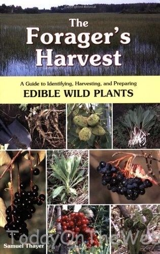 The Forager's Harvest Guide to Identifying, Harvesting & Preparing Wild…