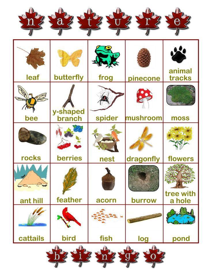 nature scavenger hunt printable found on worldseeker hubpages com rh pinterest com