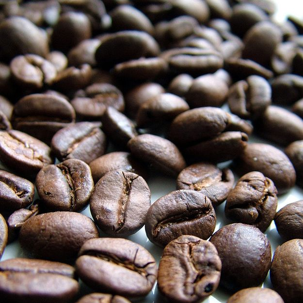Green coffee beans market price