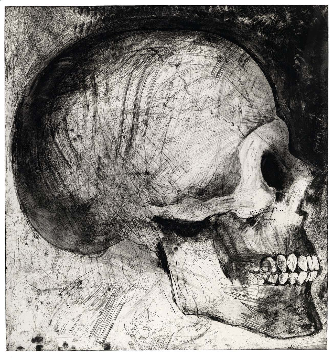 jim dine skulls - Google Search | DRYPOINT n ETCHING | Pinterest ...