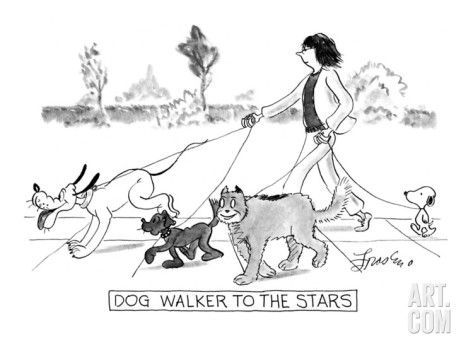 Dog Walker To The Stars By Edward Frascino Choosing A Dog New