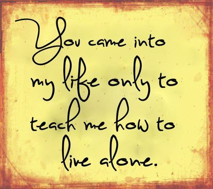 you came into my life only to teach how to live alone