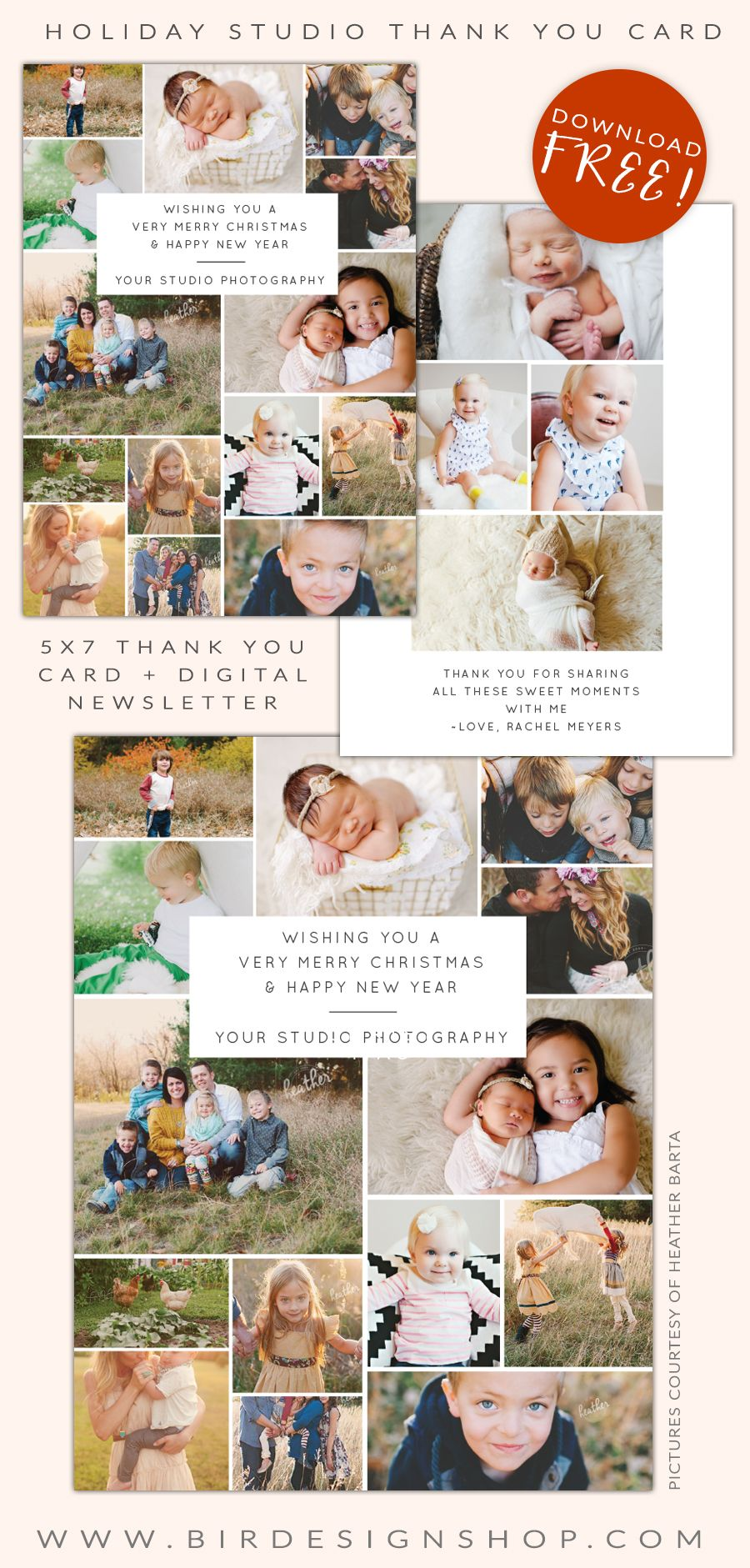 free photography studio thank you card and newsletter photoshop templates