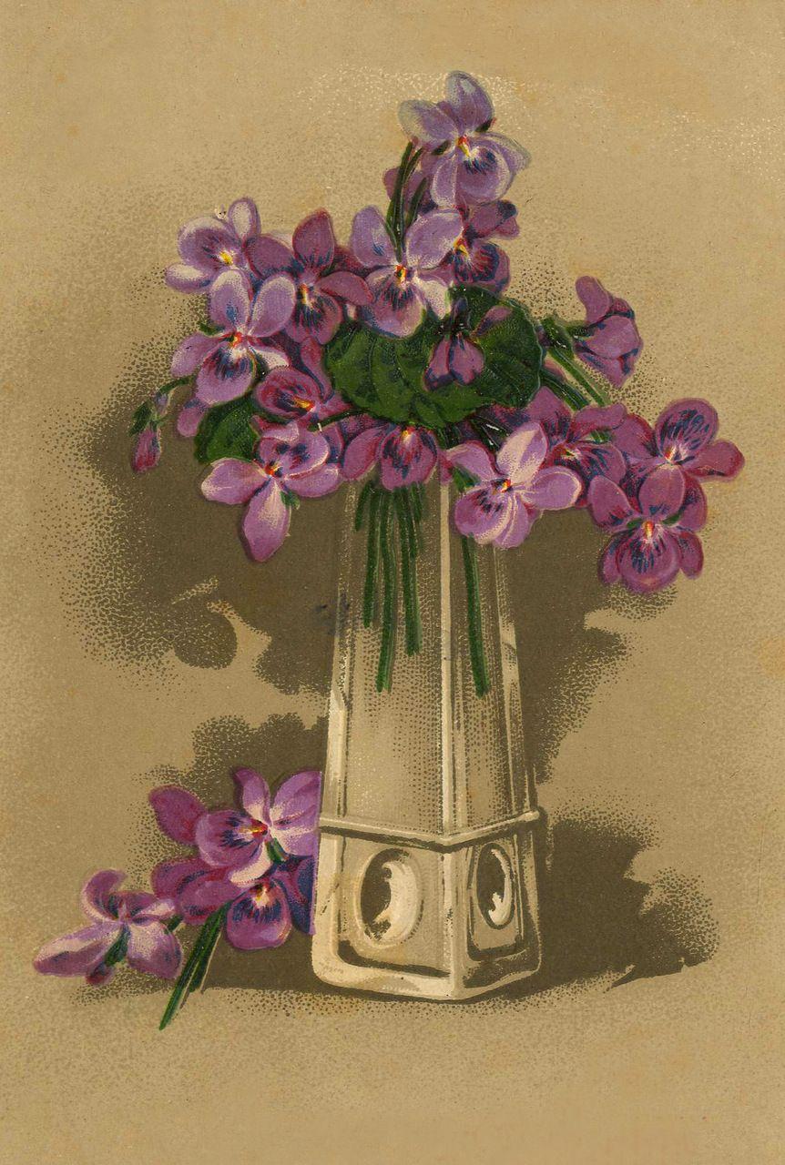 открытки с цветами старинные другой