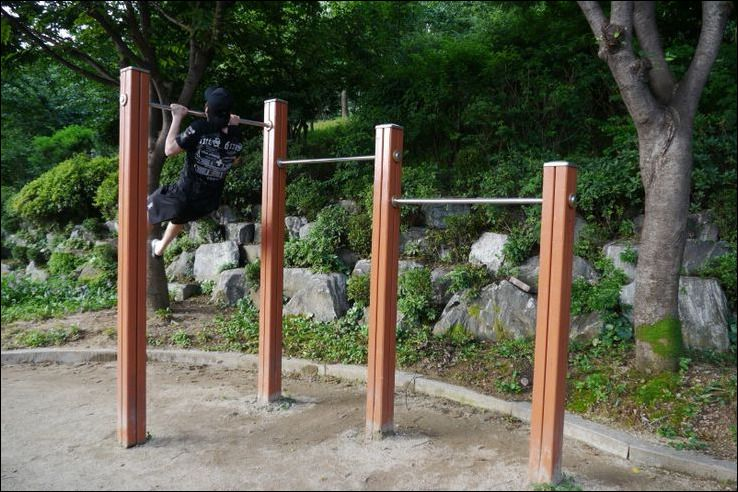 Easy Tips How To Build A Backyard Chin Up Bar   Outdoor ...